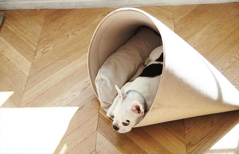 Cucci adesign per cani da interno della ditta Howly.