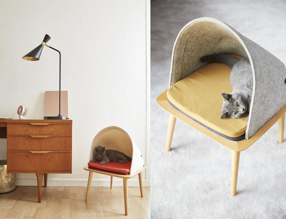 Cani e gatti in salotto cucce di design da interni per un living
