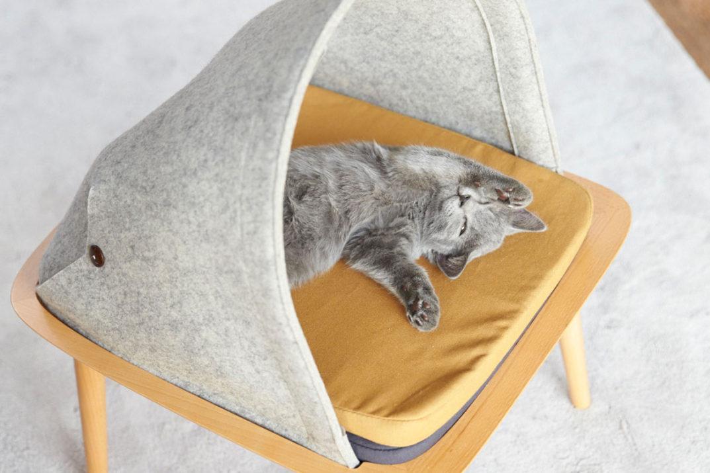 Cani e gatti in salotto: cucce di design da interni per un living