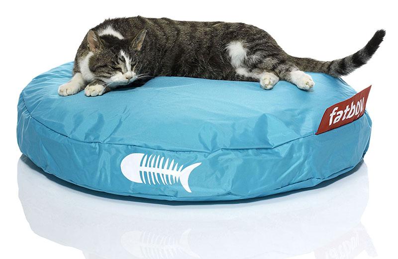 cucce e cuscini per gatti dal design bello: cuscino fatboy per gatto.